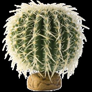 Obrázok pre kategóriu Hagen plastové rostliny