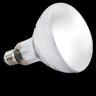 Obrazek dla kategorii zářivky, žárovky