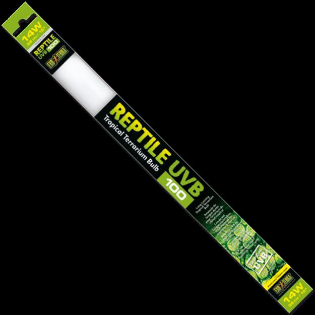 Zárivka EXO TERRA Reptile T8 UVB100 - 38 cm 14W